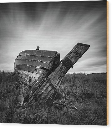 St Cyrus Wreck Wood Print by Dave Bowman