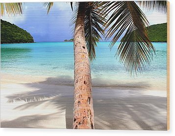 St John Usvi Wood Print by Fiona Kennard