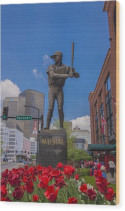 St. Louis Cardinals Busch Stadium Stan Musial Roses Wood Print by David Haskett