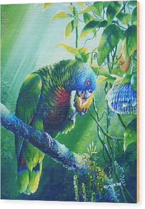 St. Lucia Parrot And Wild Passionfruit Wood Print by Christopher Cox