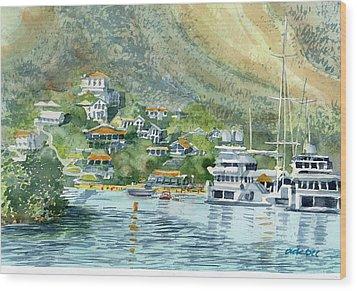 St. Maarten Cove Wood Print