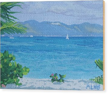 St Martin From Anguilla Wood Print by Margaret Brooks