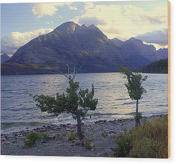 St. Mary Lake Wood Print by Marty Koch