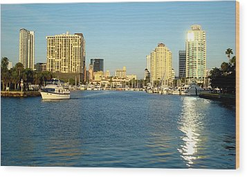 St Petersburg Florida Wood Print