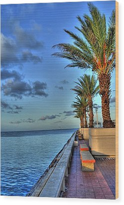 St. Petersburg Pier Tampa Bay Wood Print