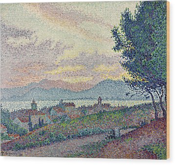 St Tropez Pinewood Wood Print by Paul Signac
