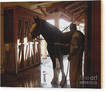 Stable Groom - 1 Wood Print