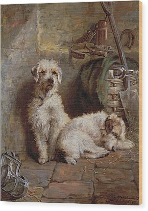 Stablemates Wood Print by John Fitz Marshall