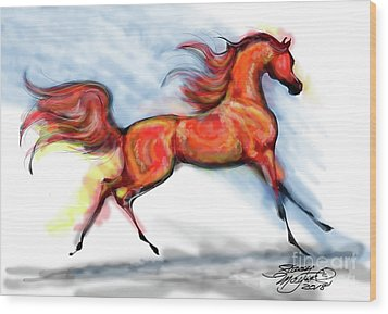 Staceys Arabian Horse Wood Print by Stacey Mayer