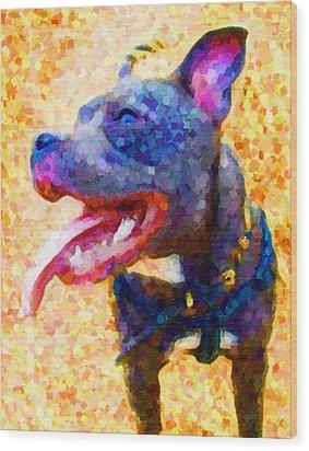 Staffordshire Bull Terrier In Oil Wood Print by Michael Tompsett