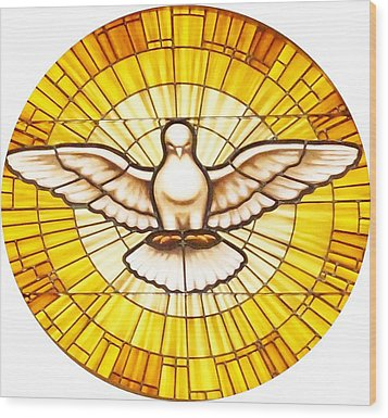 Stain Glass Dove Wood Print