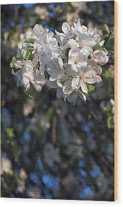 Wood Print featuring the photograph Stained Glass Bouquet by Elsa Marie Santoro