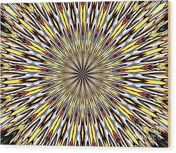 Wood Print featuring the photograph Stained Glass Kaleidoscope 22 by Rose Santuci-Sofranko