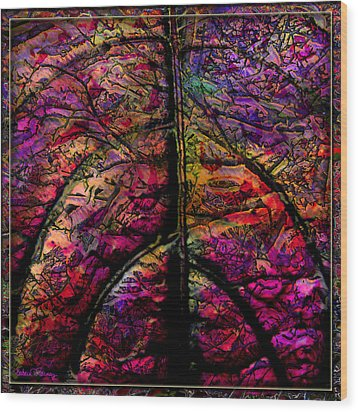 Stained Glass Not Wood Print by Barbara Berney