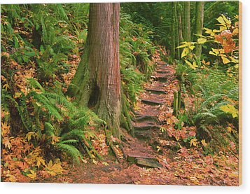 Stairway Forgotten Wood Print by Robert Evans