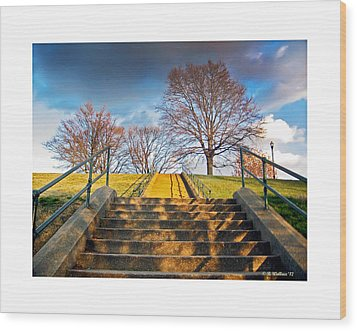 Stairway To Federal Hill Wood Print by Brian Wallace