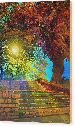 Stairway To  Wood Print by Kat Besthorn