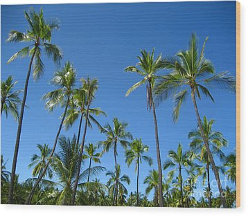 Stand Of Palms Wood Print