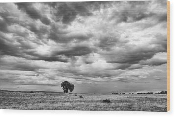 Wood Print featuring the photograph Standing Alone by Monte Stevens