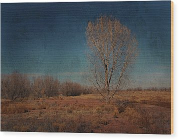 Wood Print featuring the photograph Standing Solo by Barbara Manis