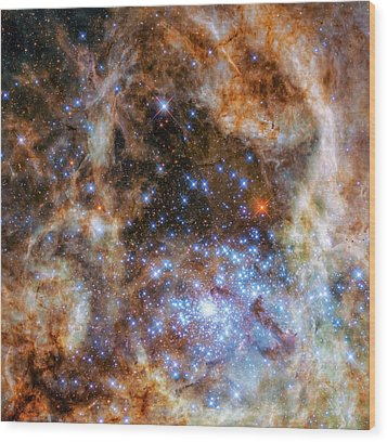 Wood Print featuring the photograph Star Cluster R136 by Marco Oliveira