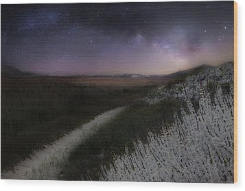 Wood Print featuring the photograph Star Flowers by Bill Wakeley