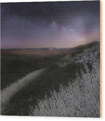 Wood Print featuring the photograph Star Flowers Square by Bill Wakeley