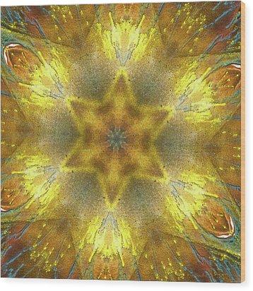 Star Kaleidoscope Wood Print by Wim Lanclus