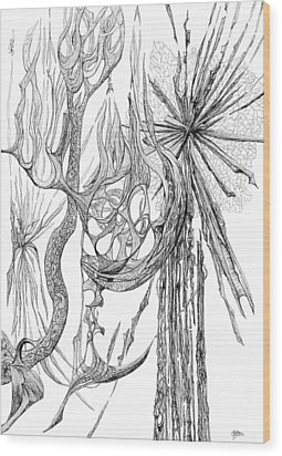 Starburst Wood Print