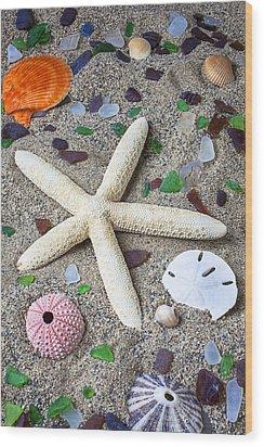 Starfish Beach Still Life Wood Print by Garry Gay