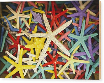 Starfish Dressed Up Wood Print by Marilyn Hunt
