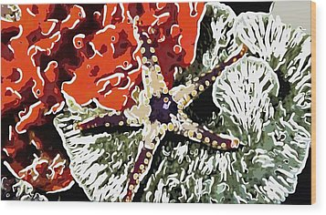 Starfish In Coral Reef 7 Wood Print by Lanjee Chee