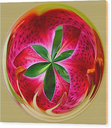 Stargazer Lily Orb Wood Print by Bill Barber