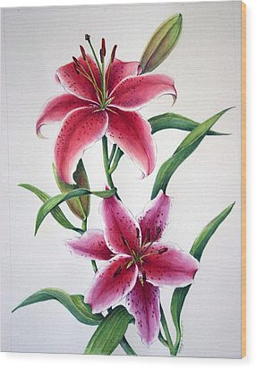 Wood Print featuring the painting Stargazer  by Margit Sampogna