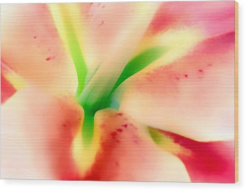 Stargazer Seduction Wood Print
