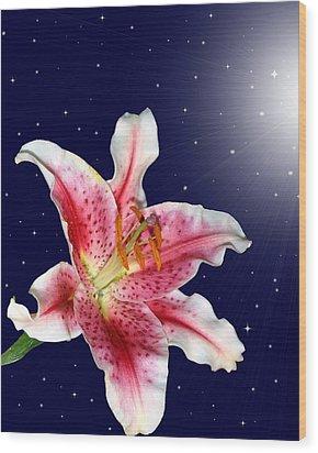 Stargazing Wood Print by Kristin Elmquist
