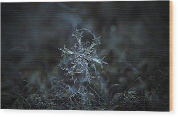 Starlight, Panoramic Version Wood Print by Alexey Kljatov