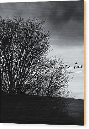 Starlings Roost Wood Print by Philip Openshaw