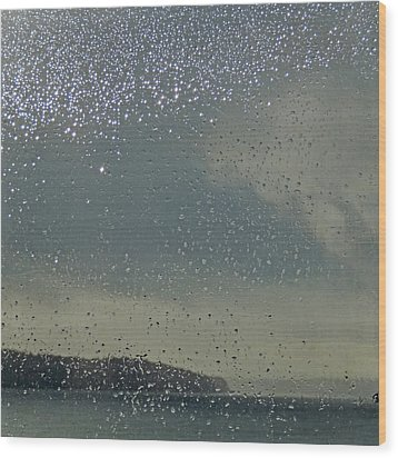 Wood Print featuring the photograph Starry Day by Sally Banfill