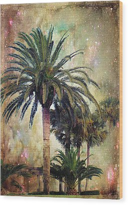Starry Evening In St. Augustine Wood Print