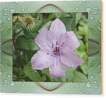 Wood Print featuring the photograph Starry Mauve by Bell And Todd