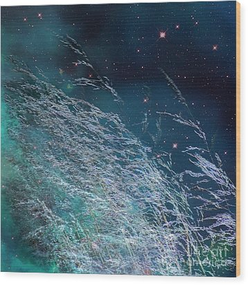 Wood Print featuring the photograph Starry Sky Grass by Yulia Kazansky