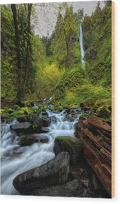 Wood Print featuring the photograph Starvation Creek And Falls by Ryan Manuel