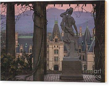 Statue Of Diana Wood Print