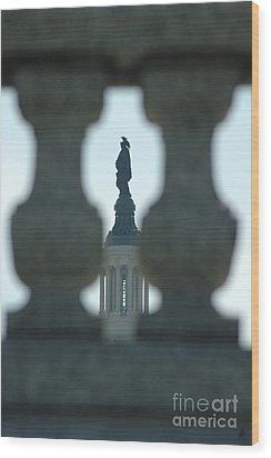 Statue Of Freedom Through Railing Wood Print