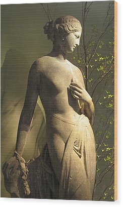 Statuesque Wood Print by Jessica Jenney