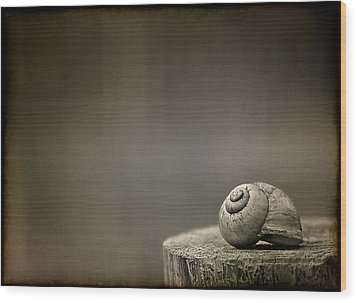 Stay Wood Print by Evelina Kremsdorf