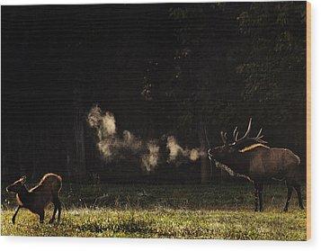 Steamy Breath Elk Bugle Wood Print