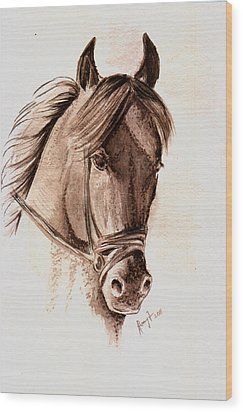 Steely Black Stallion Wood Print by Remy Francis