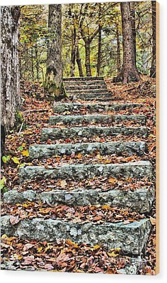 Wood Print featuring the photograph Step Into The Woods by Debbie Stahre